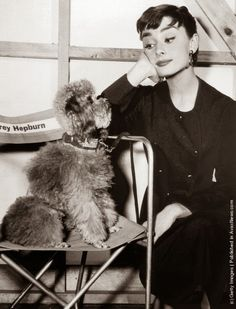Time For Poodles And Friends: Poodles-Vintage Black And White Photos