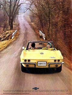 road trip - yeah baby!