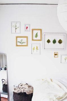 DIY Room Decor: The 10 Best Framed Found Object Ideas