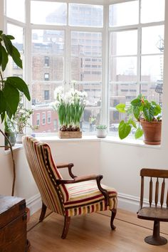 Sneak Peek: Best of Indoor Plants. A sunny window sill makes the perfect spot for an indoor garden in Asher Israelow and Jamie Goldenberg's New York City apartment. #sneakpeek