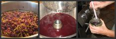 Concord Grape Juice from Steamer Juicer