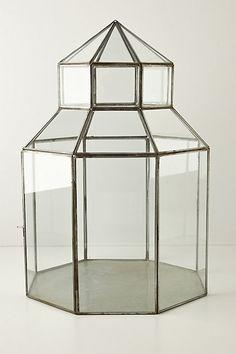 Beautiful glass terrarium.  Love it for my jewelry.