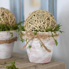 These easy-to-make Mossy Pots don't cost a lot of money and pack a visual punch. Makes a great gift!