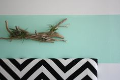 driftwood & airplant wall hanging.