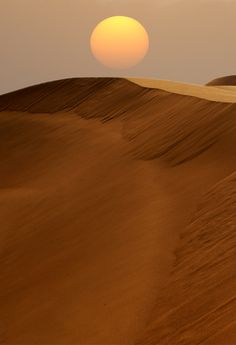 would love to go camping in the sahara