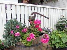 Garden ideas; lovely