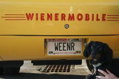 wiener mobile on pinterest food truck pedal cars and. Black Bedroom Furniture Sets. Home Design Ideas