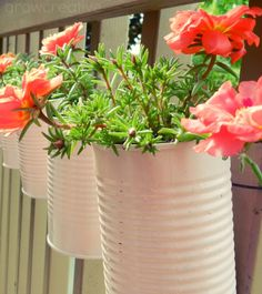 Vertical Tin Can Planters, Outdoor Living Decor: Grow Creative What a great idea to use up all those old cans and have a cute little garden...