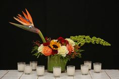 Floral Menurkey  Floral Art for Thanksgivukkah  From Rittners Floral School Boston, Ma. www.floralschool.com www.facebook.com/floralschool