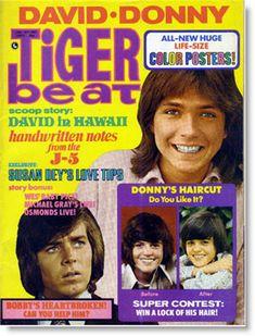 Tiger Beat Magazine.