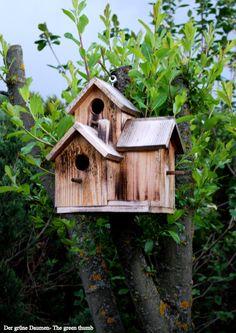 Birdhouse in our garden!