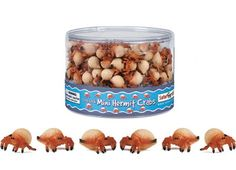 Mini Hermit Crabs (1 Hermit Crab) at theBIGzoo.com, a family-owned toy store. Perfect for cupcake toppers, party favors, cake decorations, table confetti, game pieces, dioramas, craft projects, and much more.