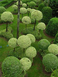 Moss covered balls on stick for fairy garden