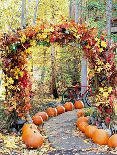 We love this pretty pumpkin-lined path! Find more ideas to decorate for fall outdoors: http://www.bhg.com/halloween/outdoor-decorations/outdoor-halloween-decorating-with-pumpkins/?socsrc=bhgpin082812pumpkinlinedpath#page=17
