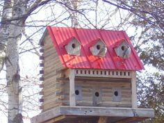Extreme Birdhouse - John Looser  he makes amazing HUGE houses!