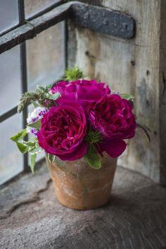 ** Buon pomeriggio ~ Have a nice afternoon ~ Bon après midi ** http://locharme.blogspot.it/