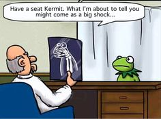 Kermit gets bad news....
