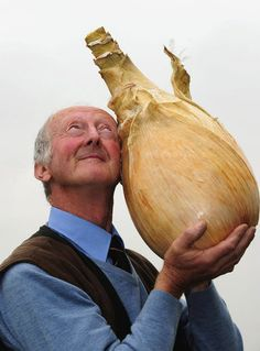 world's largest onion