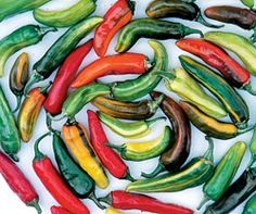 Pepper, Fish