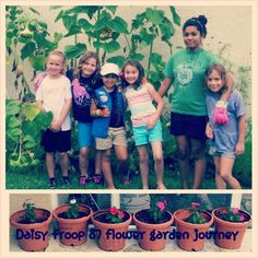 welcome to the daisy flower garden pdf