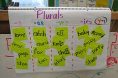 Live to Learn; Learn to Teach: Plural Plurals