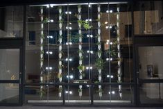 Vertical, hydroponic, modular, low-energy, high-yield, edible window gardens right in your own apartment.  #verticalgardens #hydroponics #ediblegardens
