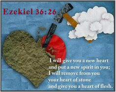 I will give you a new heart and put a new spirit in you; I will remove from you your heart of stone and give you a heart of flesh.  Ezekiel 36:26