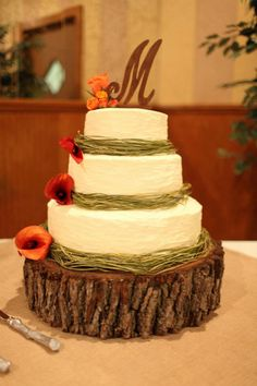 This was my first 3 tier wedding cake I made for my sister.  It was an outdoor theme and we used a real tree stump.