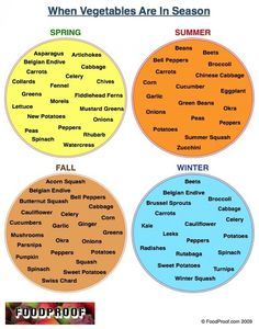 Vegetables: What's in Season? Infographic