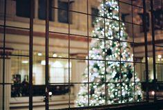 "Film Photo By: Jamie Klimes  ""O, Tannenbaum"" - Macy's Christmas Tree, Chicago Nikon F100, Nikkor 50mm f/1.4, Kodak Portra 160NC"