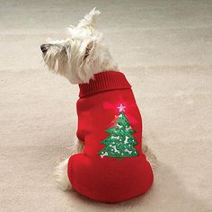 Ugly Sweater Party! Twinkling Star Christmas Tree Holiday Dog Sweater