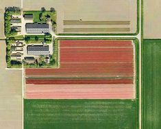 An aerial view of Dutch tulip fields. So cool!