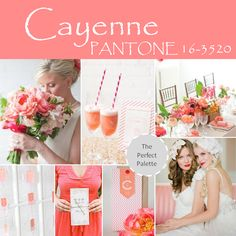 Cayenne, Pantone 16-3520 http://www.theperfectpalette.com/2013/11/top-10-pantone-colors-for-spring-2014.html