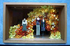 interior design, fall displays, autumn leaves, store windows, window displays, store fronts, store displays, display windows, window art