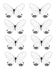 http://www.swirlydoos.com/sd_files/public/1278426280_177_FT838_butterfly_2.jpg