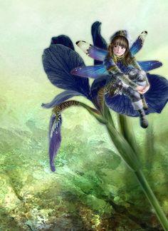 Iris Fairy by Miharu Yokota   Cuded