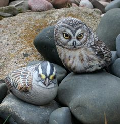 Owl and a bird Painted on Stones by Marianne Vick