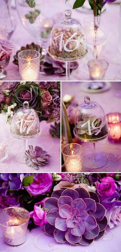 Creative table number idea: Terraniums!