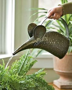 now this is a whimsical watering can