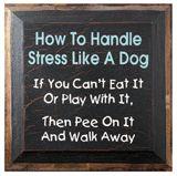 stress free, word of wisdom, dogs, funni, motto, stress management, quot, panic attacks, handl stress