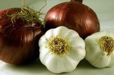 16 garden vegetables you can regrow from kitchen scraps! AMAZING!! growing garlic, onions, growing food, gardens, backyard, swiss steak, homes, salt, the roots