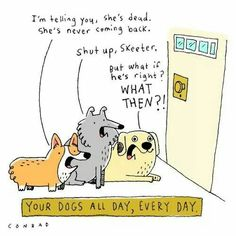 Dogs during the day.