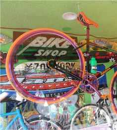 """""""I love a long bike ride on the path between Collins Ave and the ocean. Team Iguana Sports on 74th & Collins has been renting bicycles on the beach forever and the owner offers (quirky) service with a smile."""" – SJP 