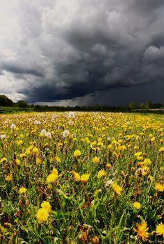 Nature's Contrast... A thunderstorm approaches Beaver Creek Nature Area near Brandon, South Dakota.