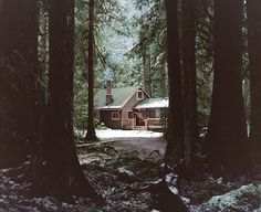 Cozy cabin nestled in the forest :)