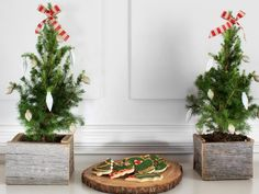 These mini junipers have the look (and smell!! yummm) of the holidays - Perfect for a tabletop or mantel. Give them rustic appeal by planting them in box planters made from reclaimed wood.  So cute.   #HolidayHouse