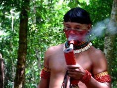 fumo indígena