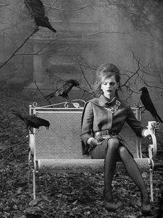 Sasha Pivovarova, Photography by Peter Lindbergh - The Birds