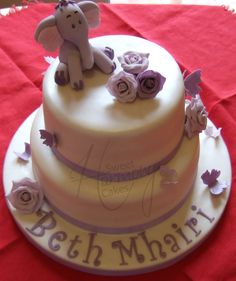 2 tier Heffalump naming day cake