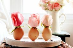 eggs and roses